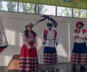 exhibicion danzas ore 2018